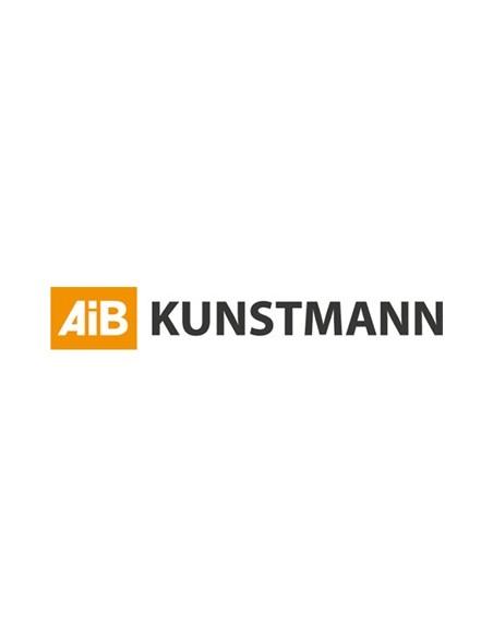 AIB Kunstmann